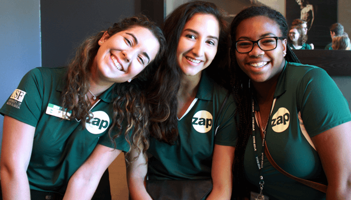 apply to usf